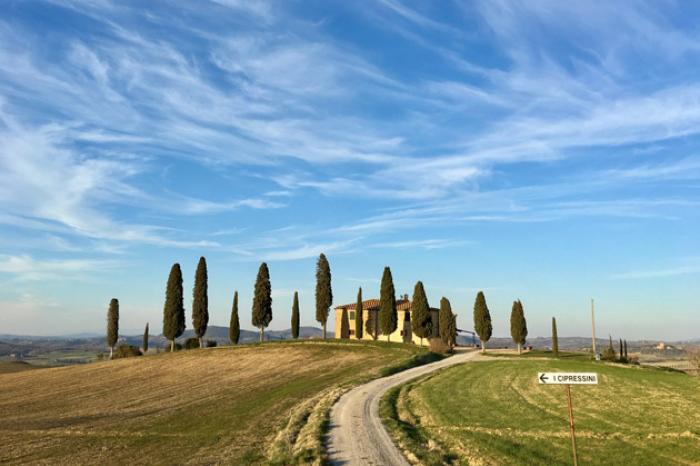 Hozamkorlátozást vezetnek be a Chiantira és a Brunellóra